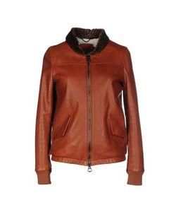 Aristolasia | Куртка