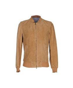 STEFANO CALMONTE PER BD   Куртка