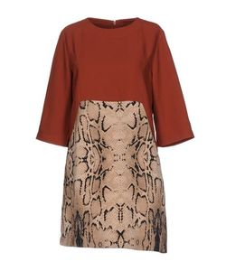 WEILI ZHENG | Короткое Платье