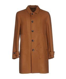HEVO'   Легкое Пальто