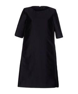 CAPUCCI | Платье До Колена
