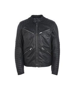 SPIDI   Куртка