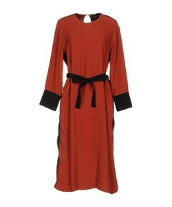 Alysi | Платье До Колена