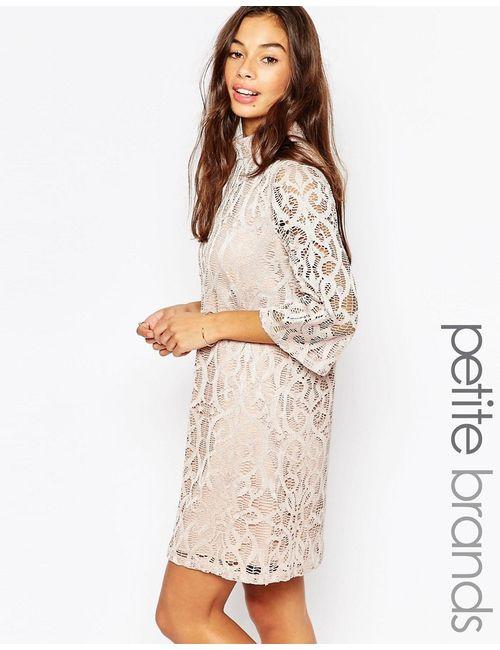 Vero Moda Petite | Женское Шампанское Кружевное Платье С Рукавом До Локтя Шампанское