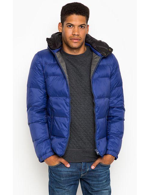 Tommy Hilfiger | Мужская Синяя Куртка