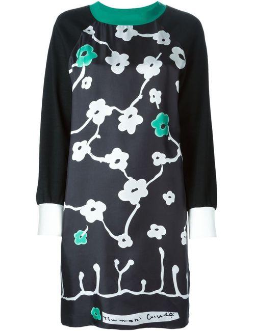 Tsumori Chisato | Женское Черный Платье-Шифт С Цветочным Принтом