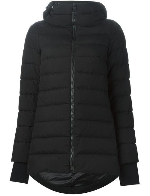 Herno | Женское Чёрный Padded Jacket