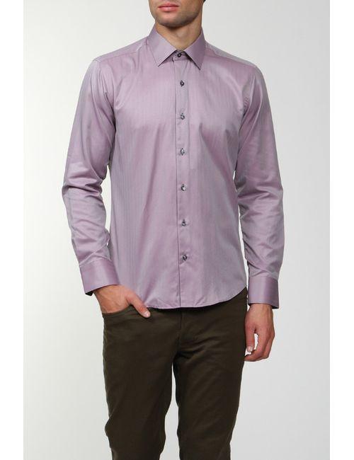 Alex Dandy | Мужская Фиолетовая Рубашка