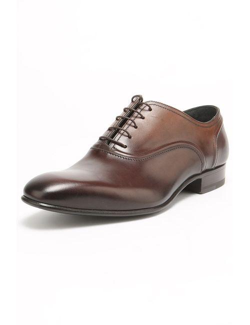Lanvin | Мужские Коричневые Туфли