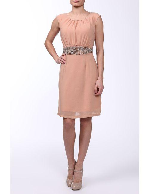 Acasta   Женское Розовое Платье