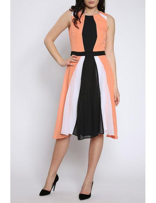 Moda Di Chiara | Женское Чёрное Платье
