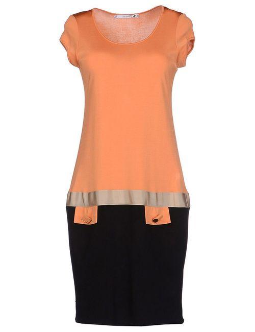 Cristinaeffe | Женское Оранжевое Платье
