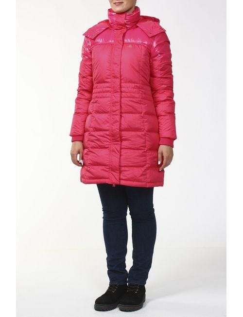 Adidas | Женское Многоцветное Пальто