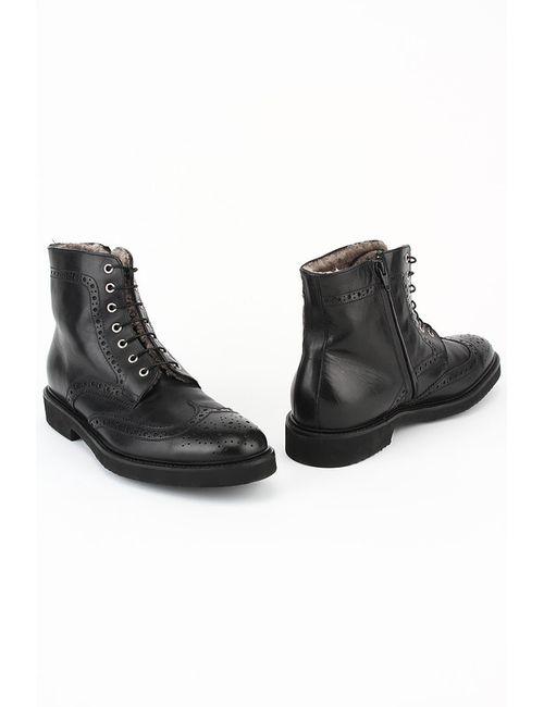 Pal Zileri | Мужские Чёрные Ботинки