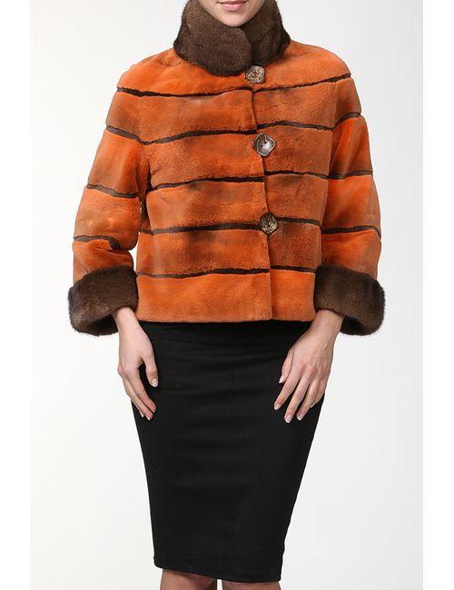 DSA | Женская Многоцветная Куртка