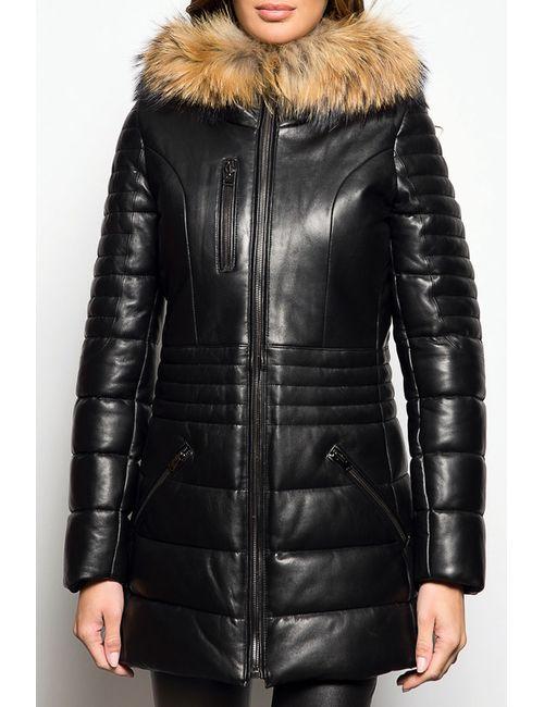 Giorgio   Женское Черный Пальто