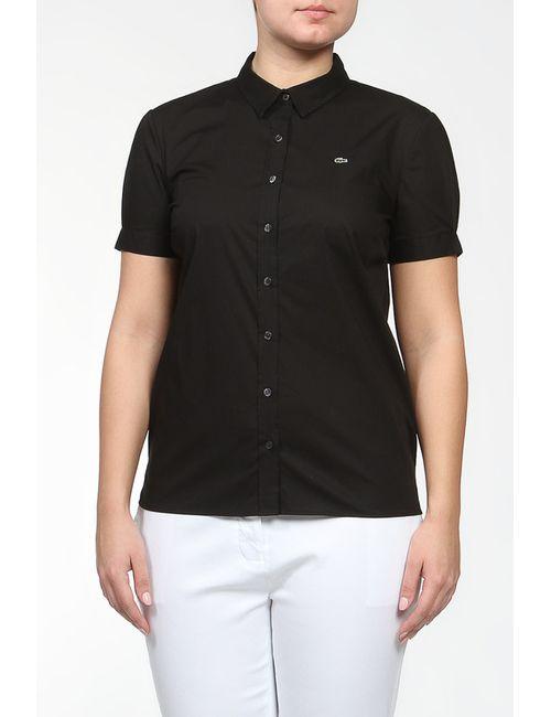 Lacoste | Женская Черный Рубашка