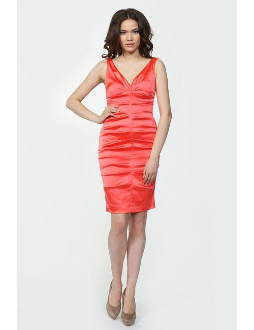 Bebe | Женское Платье