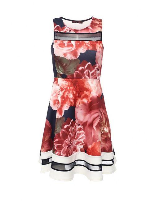 Missi London | Женское Многоцветное Платье