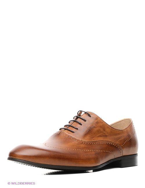 Conhpol | Мужские Коричневые Туфли