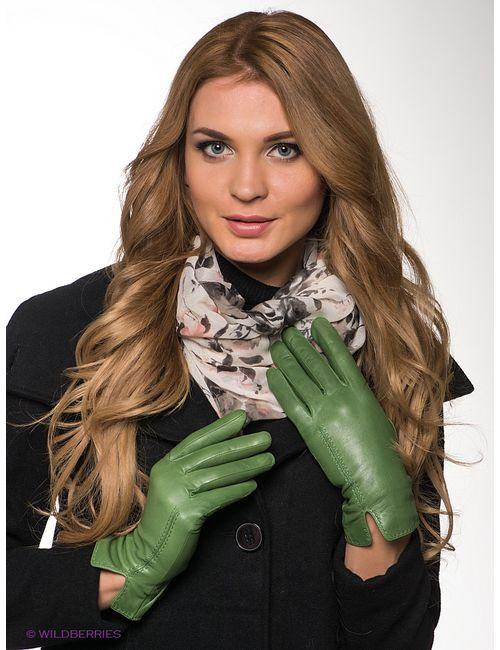 Dali Exclusive   Женские Зелёные Перчатки