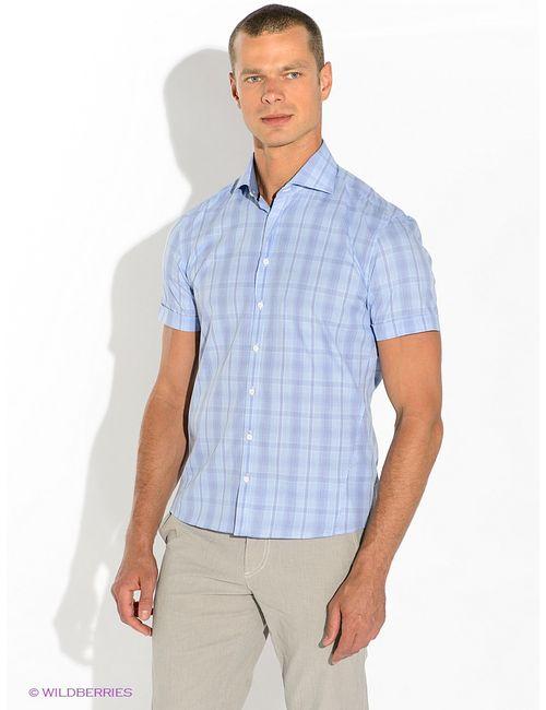 Alfred Muller   Мужские Голубы Рубашки