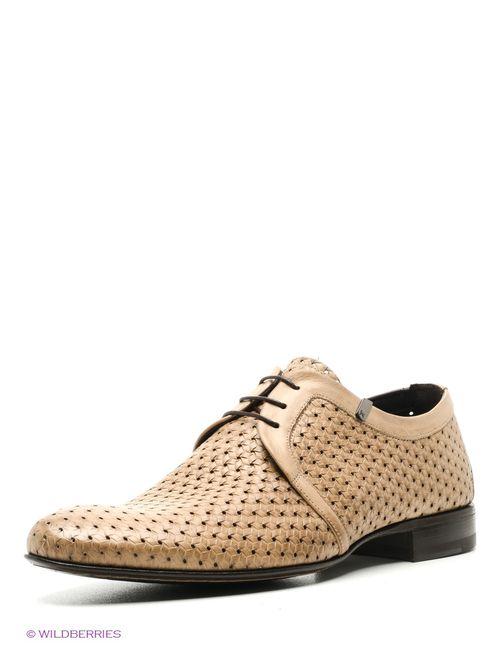 Fabi | Мужские Коричневые Туфли