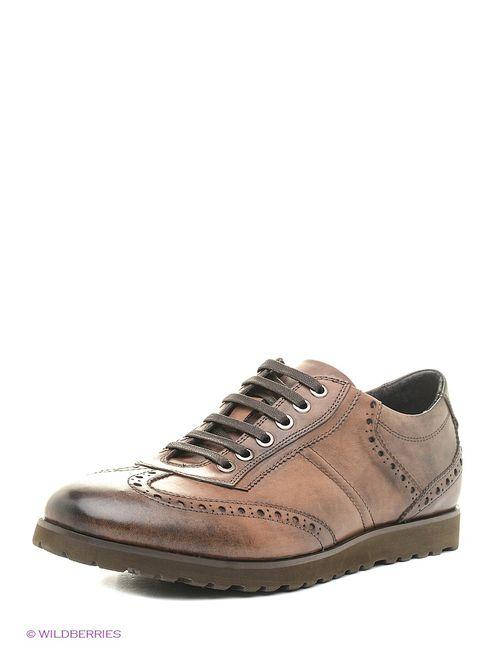 Dino Ricci | Мужские Коричневые Туфли