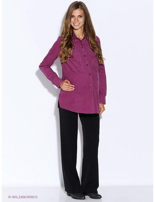 MammySize | Женские Фиолетовые Рубашки