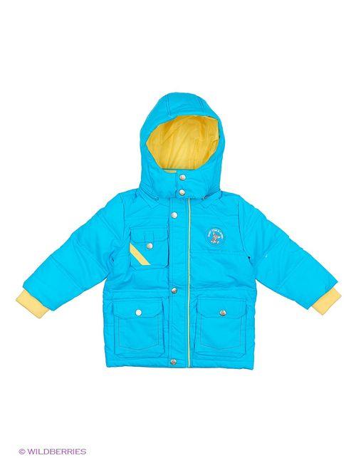 Tom And Jerry | Голубы Куртки