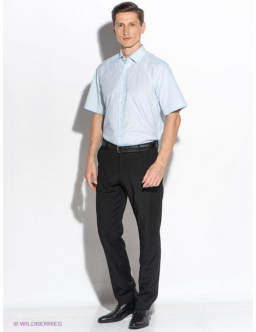 Maestro | Мужские Голубы Рубашки