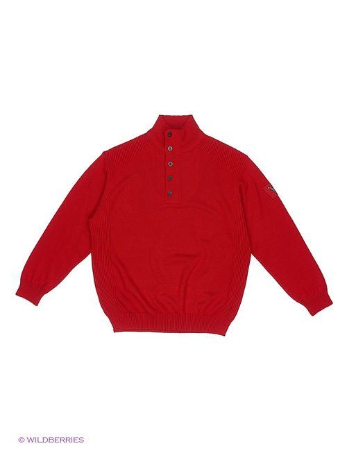 Sail Exp | Мужские Красные Джемперы