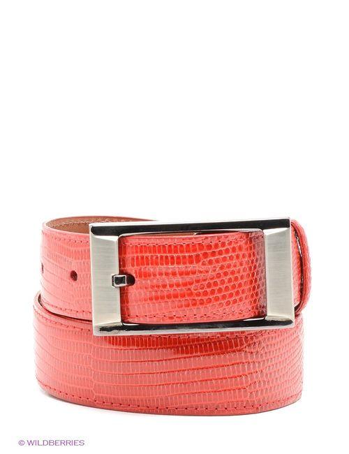 Pan American leather | Женские Красные Ремни