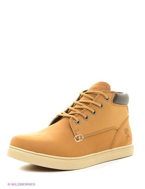 Ascot   Мужские Коричневые Ботинки
