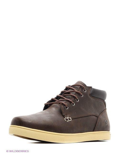 Ascot | Мужские Коричневые Ботинки