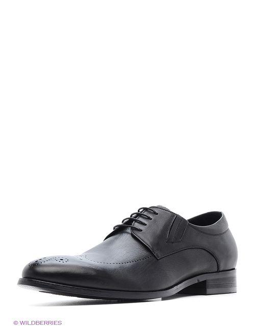 JUST COUTURE | Мужские Чёрные Туфли