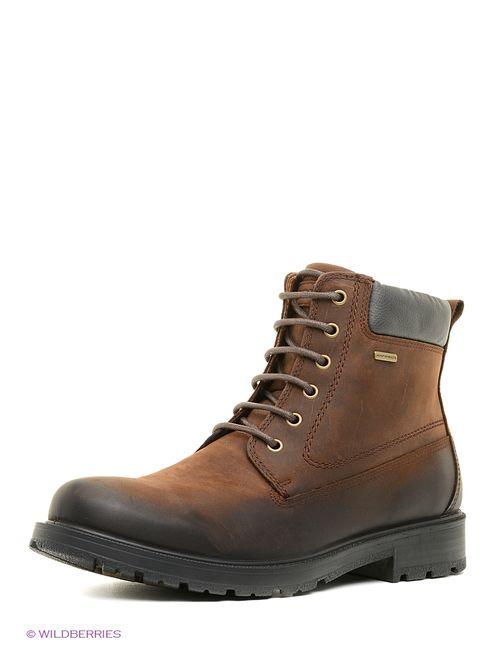 Geox | Мужские Коричневые Ботинки