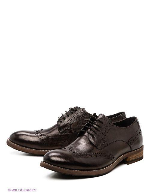 Vitacci | Мужские Коричневые Туфли