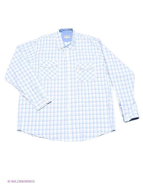 Westrenger | Мужские Голубы Рубашки