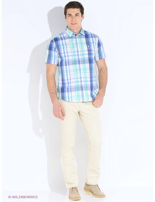 Baon | Мужские Зелёные Рубашки