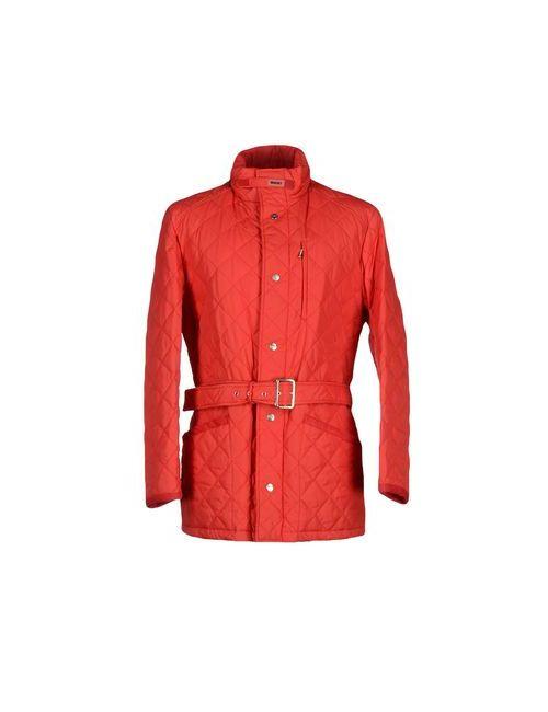 Husky   Мужская Красная Куртка