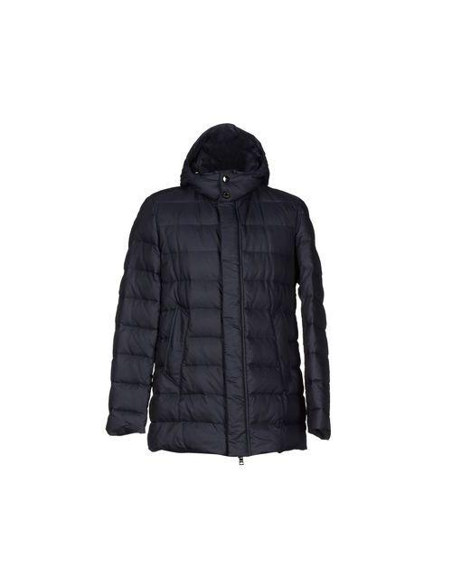 Allegri | Мужская Синяя Куртка