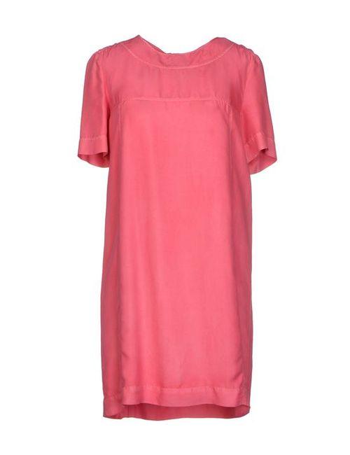 Burberry Brit | Женское Короткое Платье