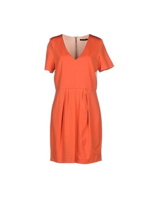Pinko Black | Женское Оранжевое Короткое Платье