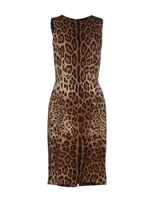 Dolce & Gabbana   Женское Платье До Колена