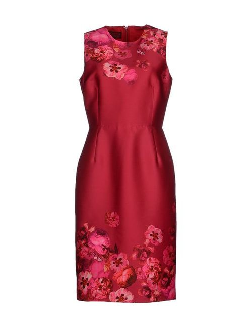 Giambattista Valli | Женское Платье До Колена