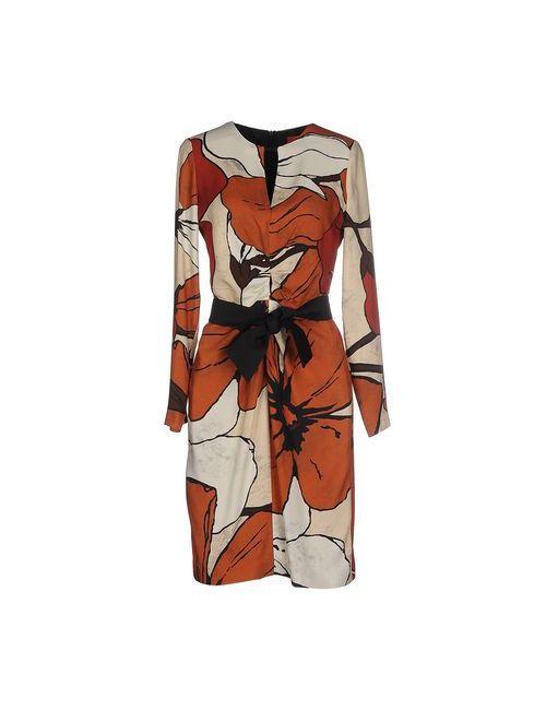 Michelle Windheuser   Женское Коричневое Короткое Платье