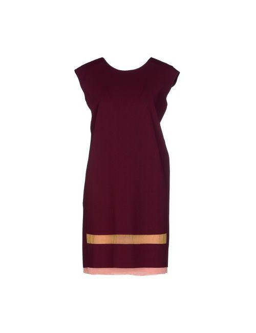 Pringle Of Scotland | Женское Коричневое Короткое Платье