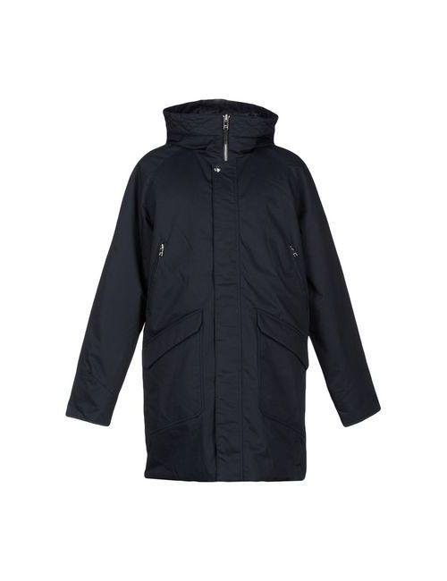 Elvine   Женская Синяя Куртка