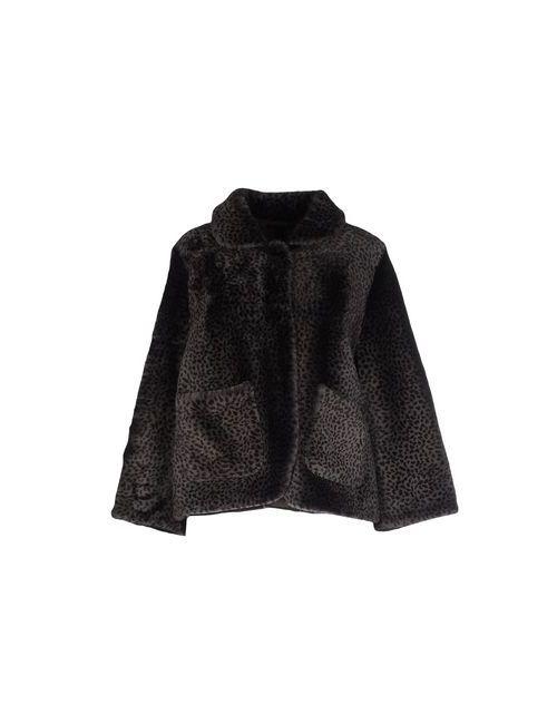 Aristolasia | Женская Серая Куртка